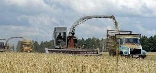 Передача земель китайцам - уход от решения проблем российского АПК