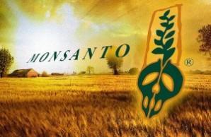 ГМО колонизация Украины