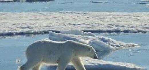 Глобальное потепление - новая религия Запада