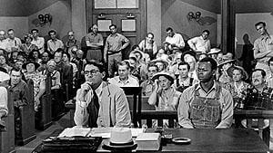 Борьба за права меньшинств, как маскировка упадка Запада